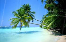 hd beach widescreen backgrounds. Plain Widescreen Summer Beach Animated Desktop Background And Hd Widescreen Backgrounds H