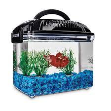 petco betta fish tanks. Perfect Tanks Imagitarium Betta Fish Dual Habitat Tank In Black For Petco Tanks