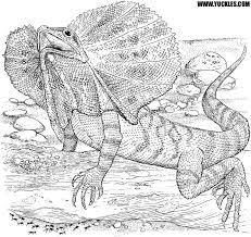 Small Picture Lizard Coloring Page by YUCKLES