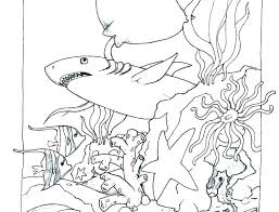 Coloring Pages Ocean Ocean Coloring Page Ocean Coloring Pages For