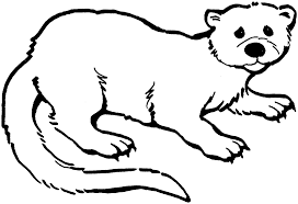 Small Picture Baby Otter Coloring Pages Coloring Coloring Pages
