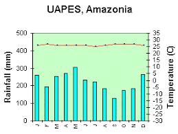Rainforest Weather Chart Weather Climate And Vegetation Mrs Conrads Kis Igcse
