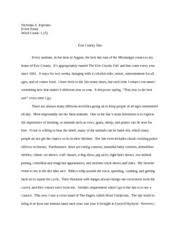 cause effect esseay cheetahs struggle to survival nicholas  4 pages place essay erie county fair