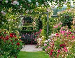 Small Picture 12 best UK Gardens images on Pinterest English gardens Gardens