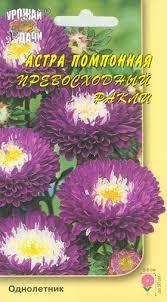 Купить <b>семена Астра Превосходный</b> Ракли (уу)