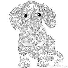 Zentangle Stylized Dachshund Dog Coloring For Adults More Dog