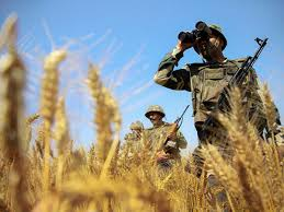 Rangers Share Price Chart Pakistan Rangers Latest News Videos Photos About