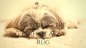 how to select the perfect area rug