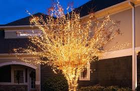 tree lighting ideas. Outside Tree Lights Wrap An Outdoor With Plus More Yard Decorating Ideas . Lighting O