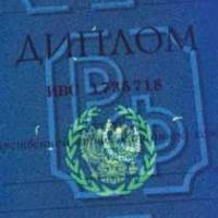 Дипломы Справки Аттестаты Свидетельства О Рождении О Браке О  Новичок
