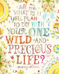 life is precious essay life is precious the hindu