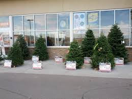 Types Of Christmas Trees  At HomeAt Home Christmas Tree