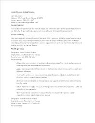 Free Junior Finance Analyst Resume Templates At
