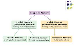 Long Term Memory Chart Chapter 6 Memory Ppt Download
