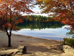 ux design quote a thoreau analysis craig graue walden pond in autumn