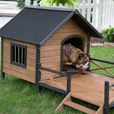 office pet ideas. Dog Houses Small Medium Large Extra And Paws Whimsical House Mybktouch Throughout Your Office Pet Ideas