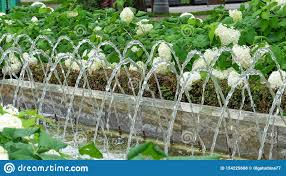 Fountain Water Feature Design Water Feature Industry Stock Photo Image Of Close Filter