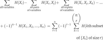 Mutual Information Venn Diagram Computational Analysis Of The Synergy Among Multiple Interacting