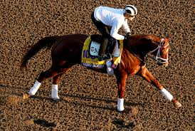 Breeders Cup Charts 2010 Breeders Cup Classic Field Ready For Prime Time The
