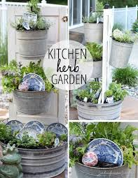 little herb garden 406 best edible gardening herbs images on