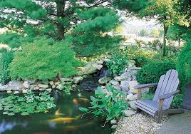 The 25 Best Small Backyard Ponds Ideas On Pinterest  Small Small Ponds In Backyard