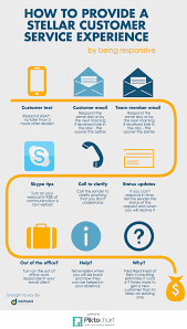 how to provide a stellar customer service experience infographic how to provide a stellar customer service experience infographic