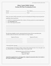 30 beautiful birth plan templates best template 504 ohio doc pdf 960