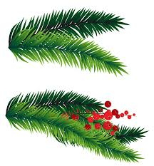 Pine Branches For Decoration Pine Branches Decoration Png Picture Gallery Yopriceville