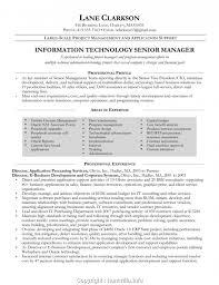 Management Resume Modern Modern Senior It Manager Cv Information Technology Senior Project