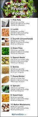 Top 10 Vegan Sources Of Protein