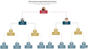 Types Of Organizational Chart Structure Types Of Organizational Charts Organizational Chart