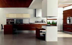 Modern Kitchen Modern Kitchen Design Style House Decor