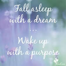 Dream And Sleep Quotes Best Of Fall Asleep With A DreamWake Up With A Purpose Sleep Quotes