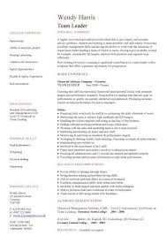 Sample Resume Leadership Profile Template Kor2mnet Elite Board Us