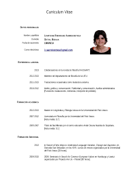 curriculum of vitae resume template .