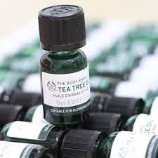 Kết quả hình ảnh cho tea tree oil the body shop
