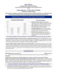 Executive Resume Service Professional Resume Writing Resume Custom Resume Def