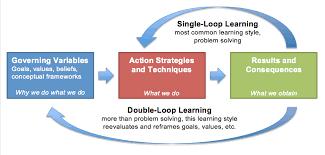 Double Loop Learning & Leadership Development