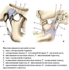 История болезнь перелом височно нижнечелюстный сустав челюстно  история болезнь перелом височно нижнечелюстный сустав