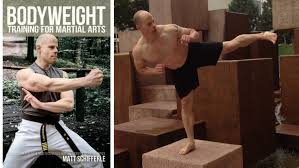calisthenics for martial arts 4 things