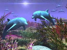 3d animal wallpaper desktop.  Animal 3d Animal Wallpaper  Fish Download Free  On Animal Wallpaper Desktop L