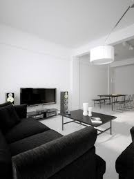 modern minimalist black and white lofts two low profile sofas hug the living space in a amusing white room