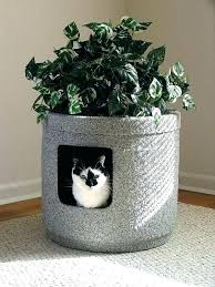furniture to hide litter box. Plant Litter Box Hidden Furniture Cat Stone Coat Contemporary With To Hide