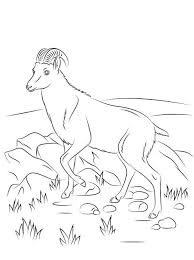 Farm Coloring Pictures Photos Of Luxury Goat Farm Coloring Pages