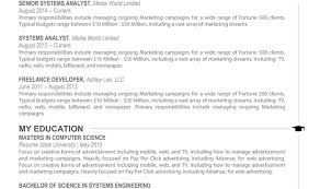 Magnificent Digital Resume Template Gallery Resume Ideas