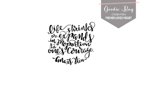 free hand lettered anais nin life