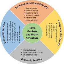 home gardening and urban agriculture