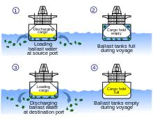 ballast water process