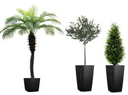artificial trees topiary and outdoor