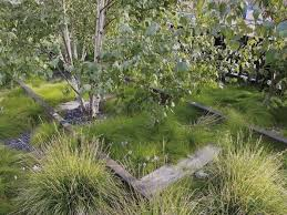 Small Picture 2615 best Grass Gardens images on Pinterest Ornamental grasses